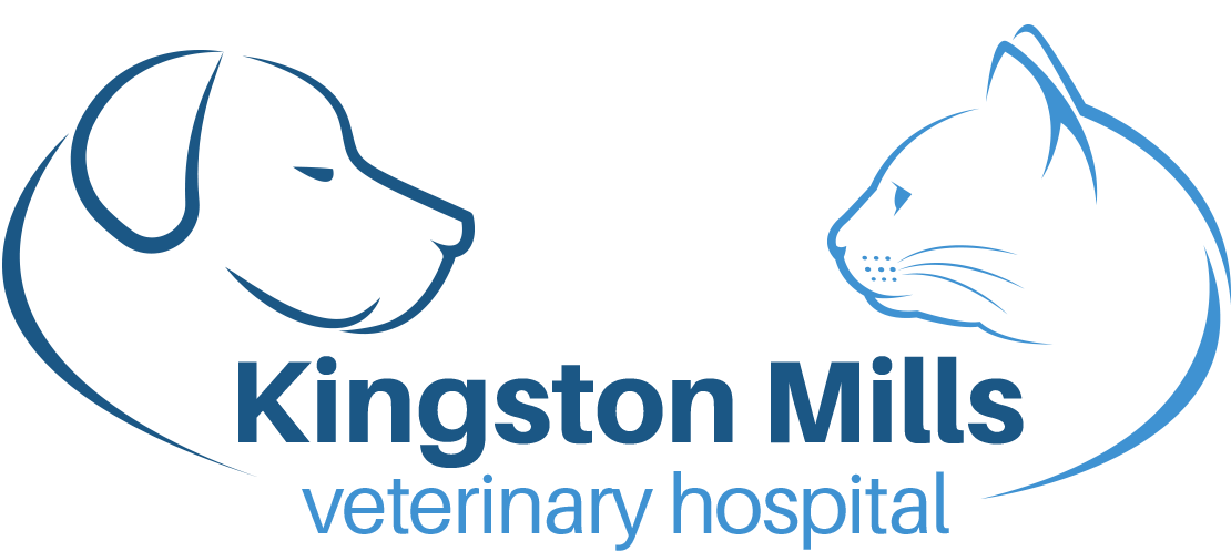 Kingston Mills Veterinary Hospital